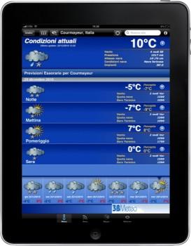 iPad Portrait Snow