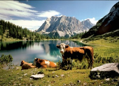 vacanze austria